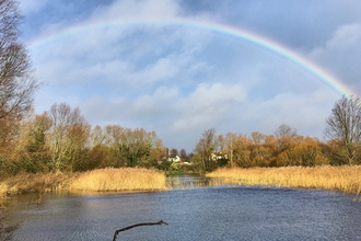 A rainbow over the pond at Gwent Wildlife Trust's Magor Marsh nature reserve