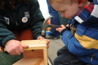 Nest box building by Amy Lewis