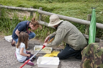 Pond dipping inspection