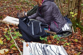 Artist working in Lady Park Wood