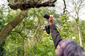 Petra photographing a tree