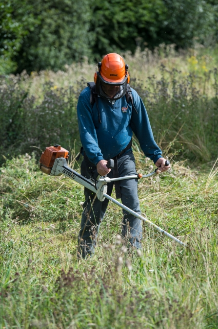 Man with Brushcutter