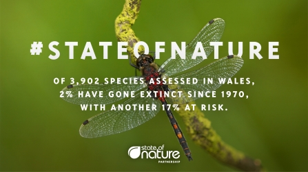 State of Nature Report 2019