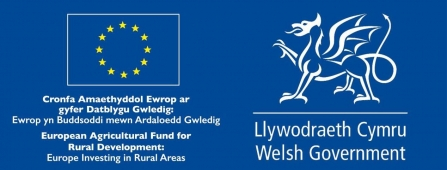 Welsh Government European Agricultural Fund for Rural Development logo
